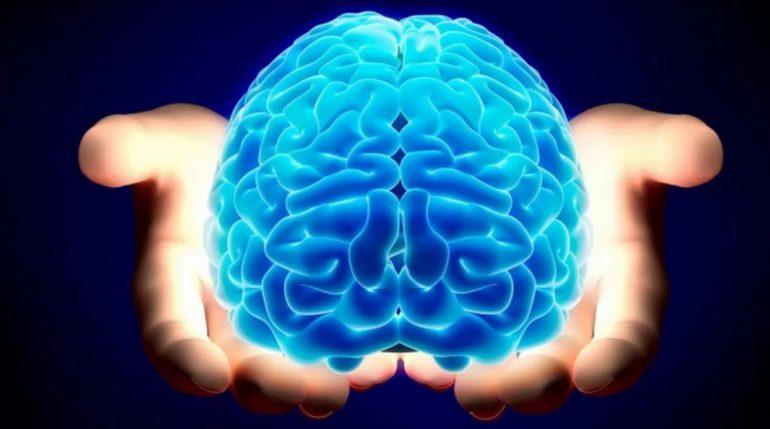 Как можно улучшить память и работу мозга взрослому человеку: самые мощные способы