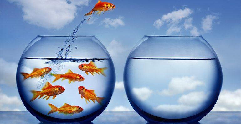 Как начать новую жизнь и изменить себя: 10 эффективных советов психолога и мотивирующие инструменты