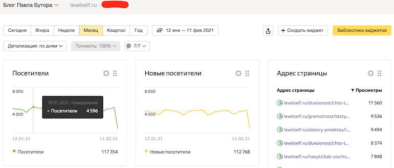 Скриншот из Яндекс.Метрики