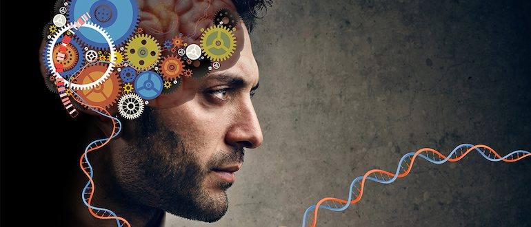 Тесты когнитивных способностей